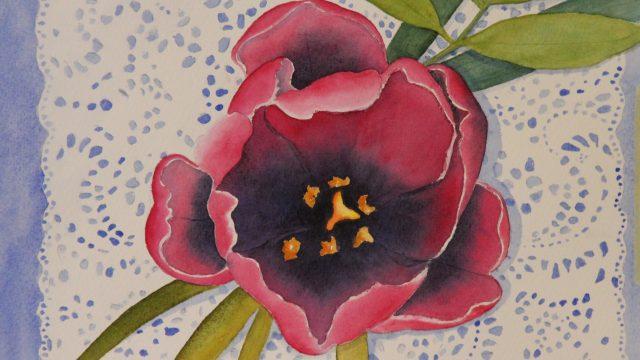 Enkel tulipan