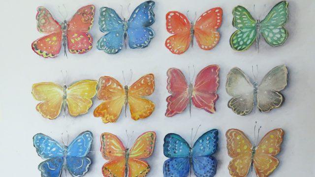 Fjärilar i färg