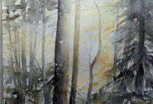 Ljuset i skogen